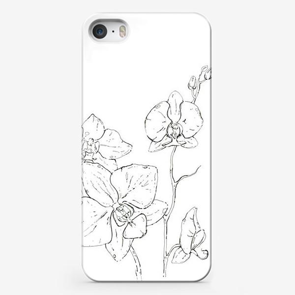 Чехол iPhone «орхидеи (цветы, flowers, orchid)»