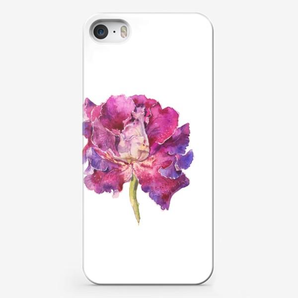 Чехол iPhone «Глоксиния»