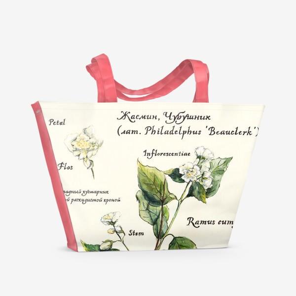 Пляжная сумка «Жасмин (Чубушник)»