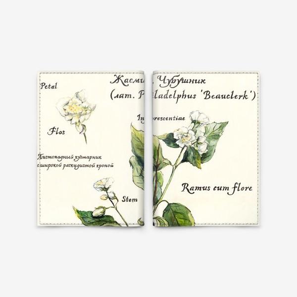 Обложка для паспорта «Жасмин (Чубушник)»