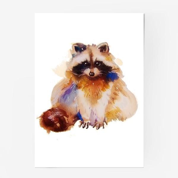 Постер «Енот с хвостом»