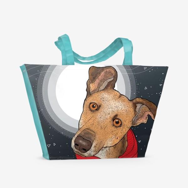 Пляжная сумка «Собака по имени Нудлс»