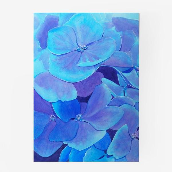 Постер «Цветы голубой гортензии, акварельный летний ботанический принт»