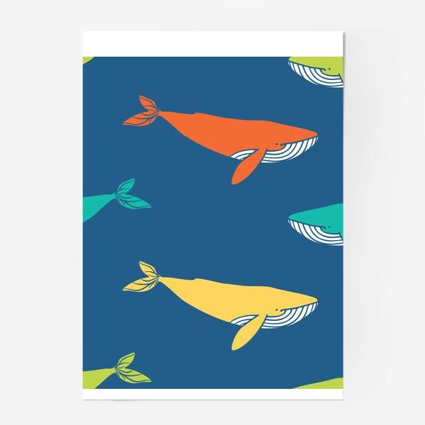 Постер «Цветные киты»