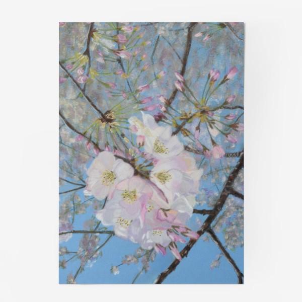 Постер «цветущая вишня-сакура»