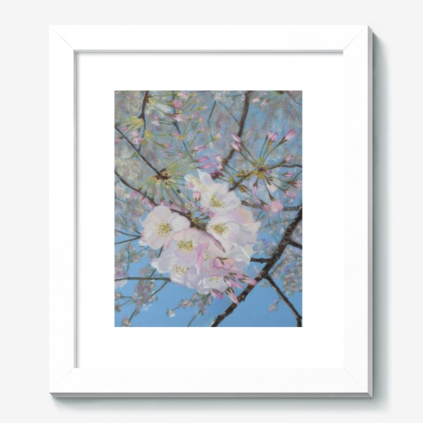 Картина «цветущая вишня-сакура»