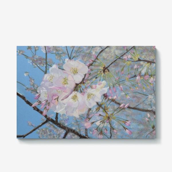Холст «цветущая вишня-сакура»
