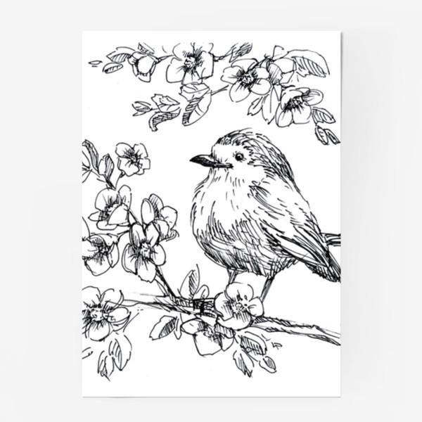 Постер «Птичка»
