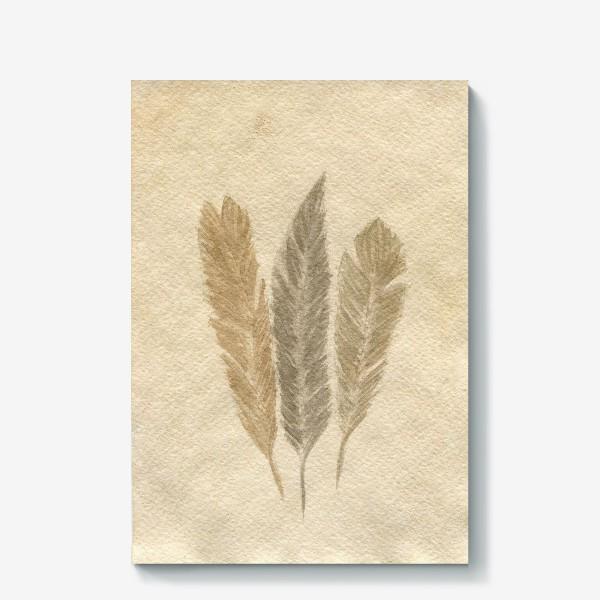 Холст « Кофейные перья »