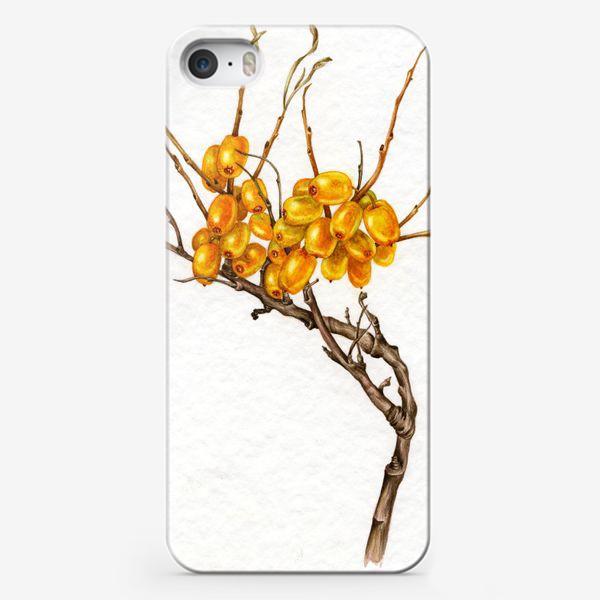 Чехол iPhone «Осенние ягоды»