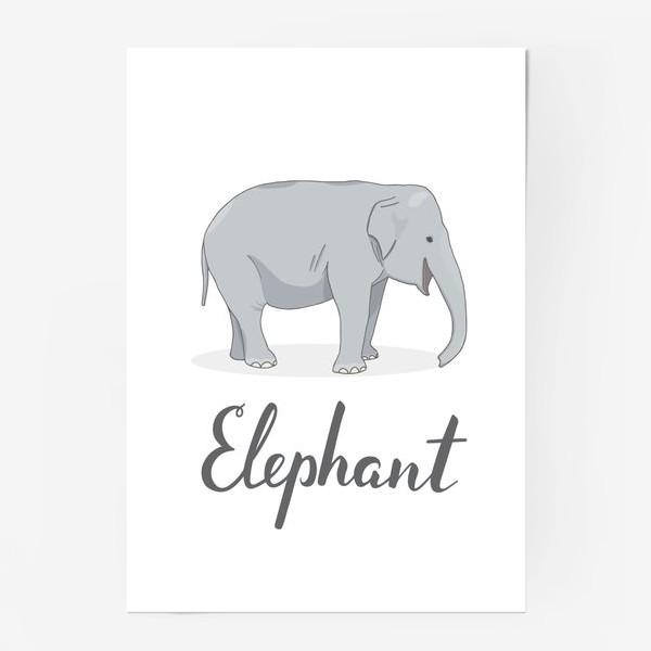 Постер «Довольный слон»