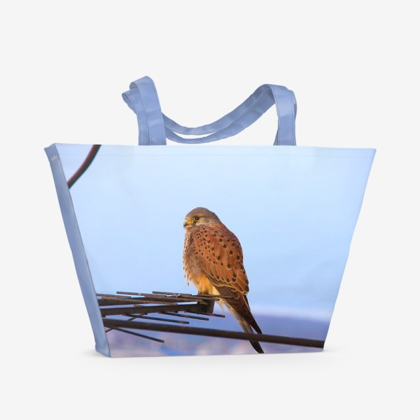 Пляжная сумка «Пустельга»