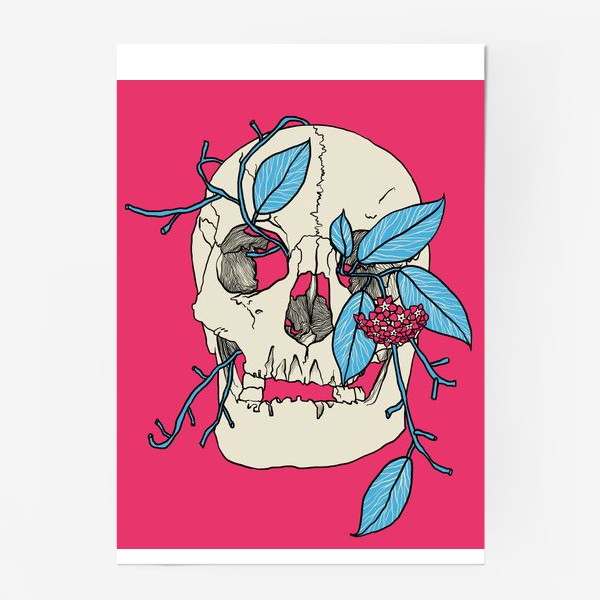 Постер «Skull»