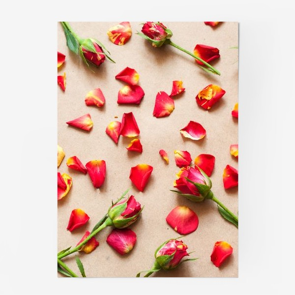 Постер «Розы и лепестки»