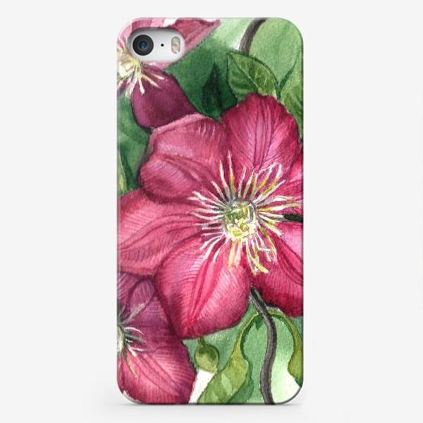 Чехол iPhone «Клематис »