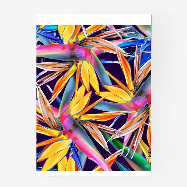Постер «Тропические цветы, стрелиция»