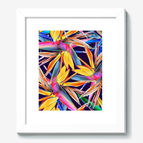 Картина «Тропические цветы, стрелиция»