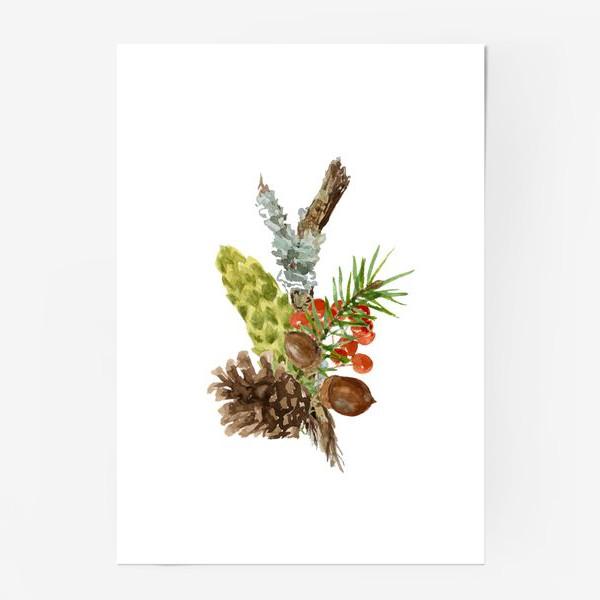 Постер «Лесные дары»