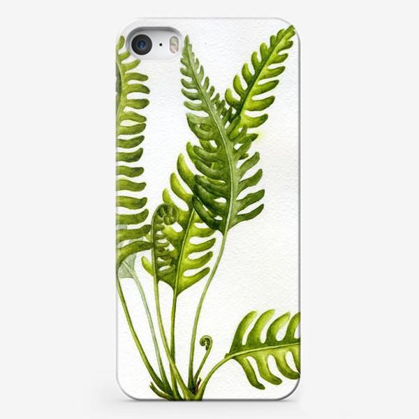 Чехол iPhone «Папоротник / Fern»