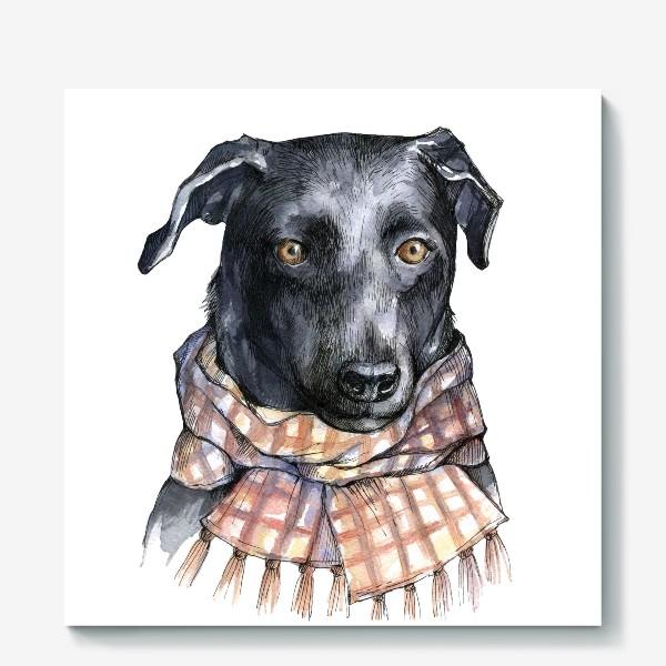 Холст «Собака и шарф»