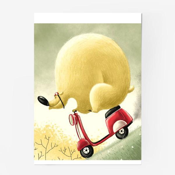 Постер «Медведь Саймон»