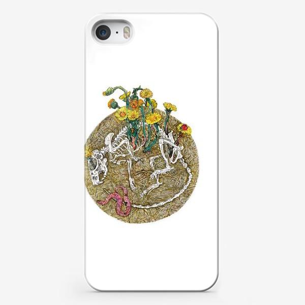 Чехол iPhone «Мать-и-мачеха.»