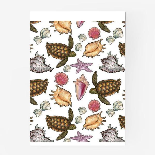 Постер «Черепаха и ракушки»