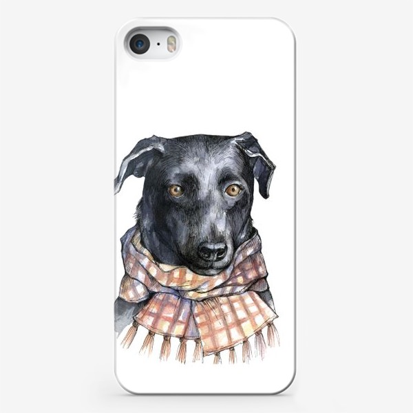 Чехол iPhone «Собака и шарф»