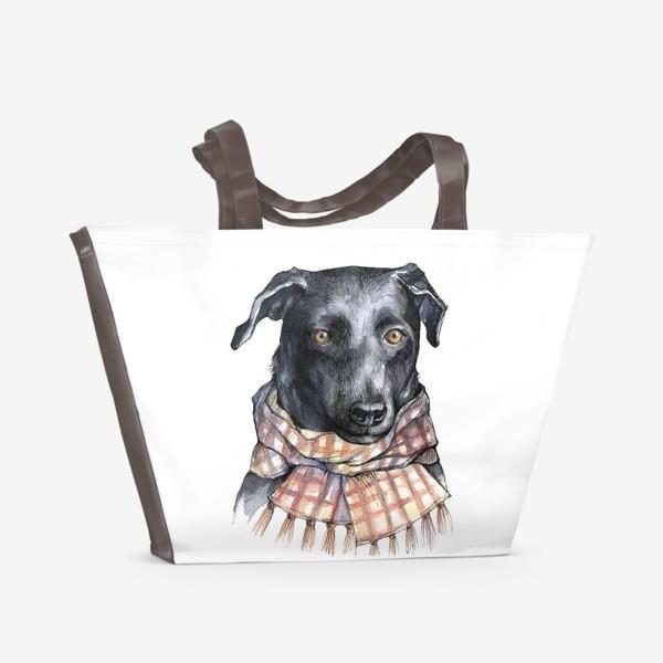 Пляжная сумка «Собака и шарф»