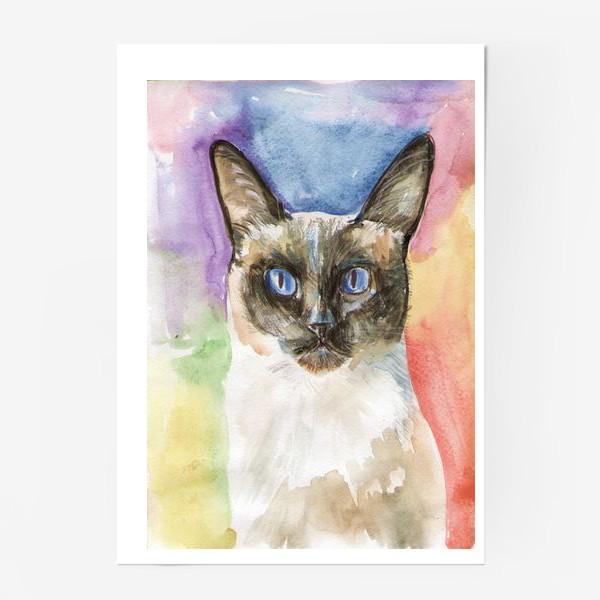 Постер «Тайский котик»