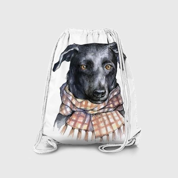 Рюкзак «Собака и шарф»