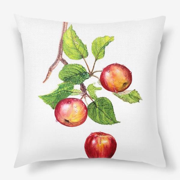 Подушка «Фрукты, красные яблоки на ветке. Ботаническая иллюстрация»