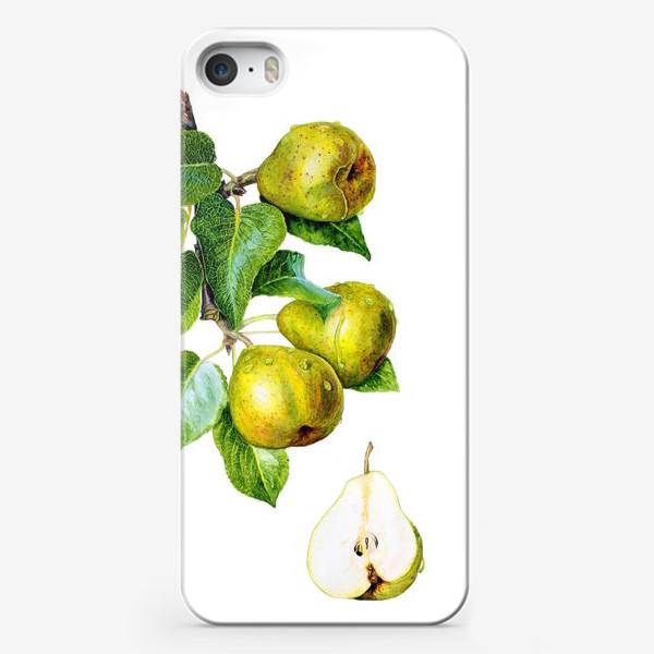 Чехол iPhone «Фрукты, зелёные груши на ветке. Ботаническая иллюстрация»