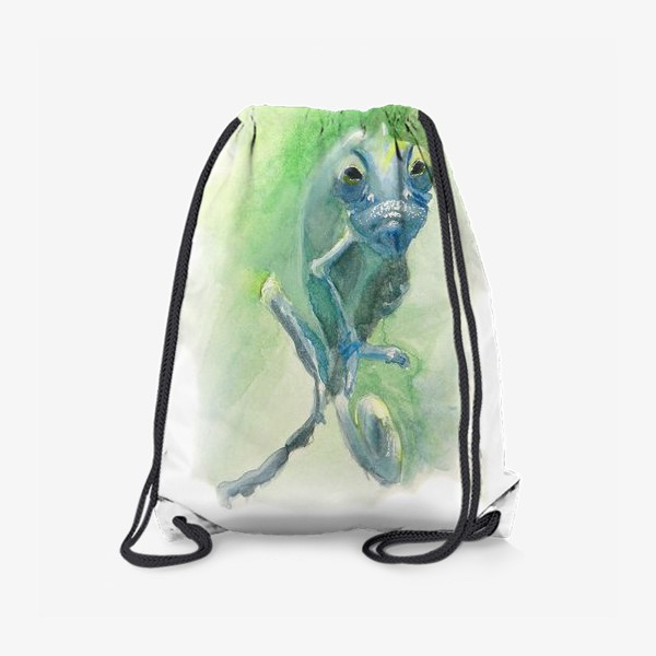 Рюкзак «Синий хамелеон»