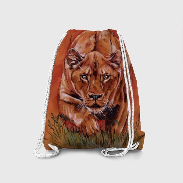 Рюкзак «львиная охота »