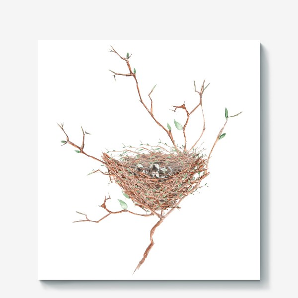 Холст «Птичье гнездо весной»