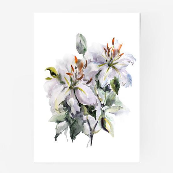 Постер «Букет Лилии»