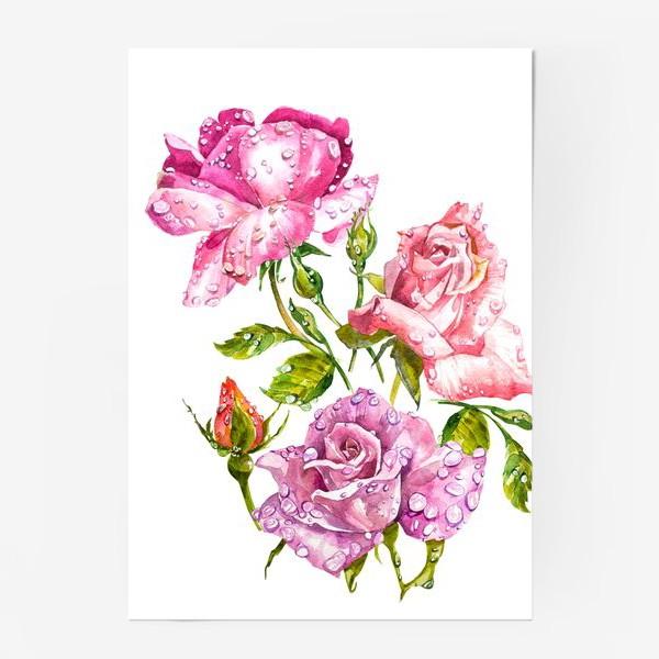 Постер «Watercolor roses»