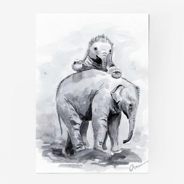 Постер «Слонята»