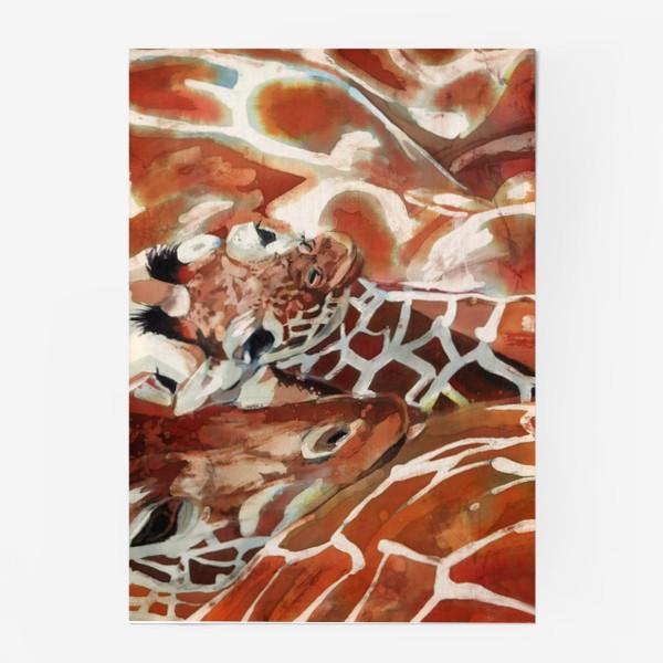 Постер «Жирафы»