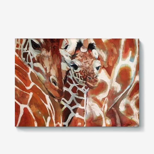 Холст «Жирафы»