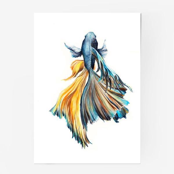 Постер «Рыбка»