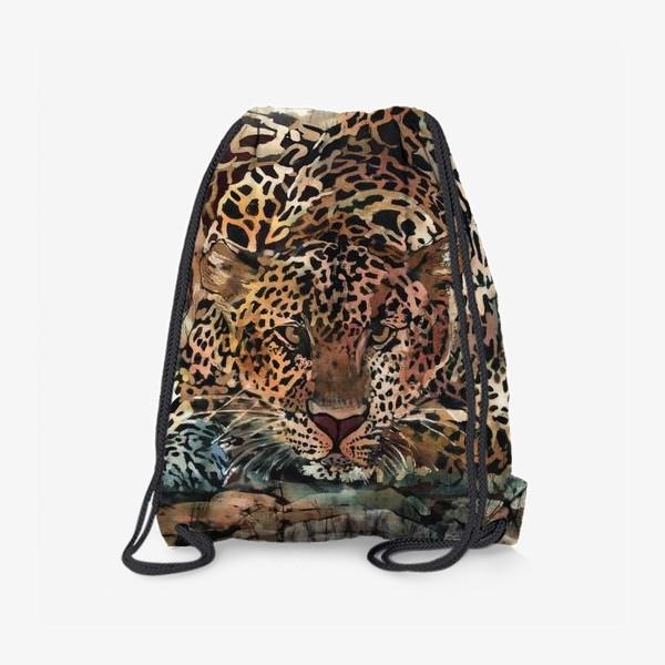 Рюкзак «Гепарды»