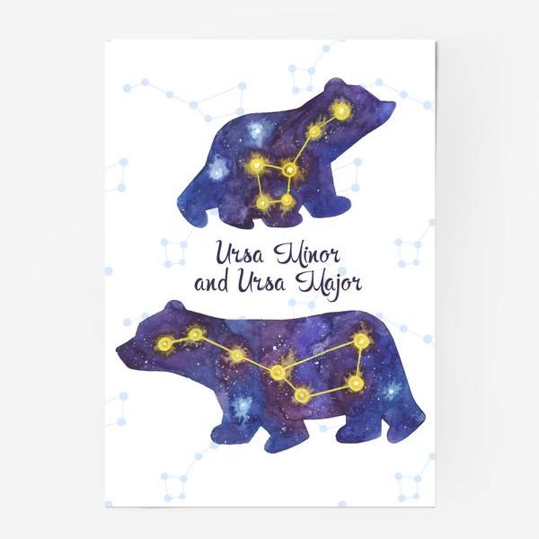 Постер «Малая и Большая медведица. Полярные мишки.»
