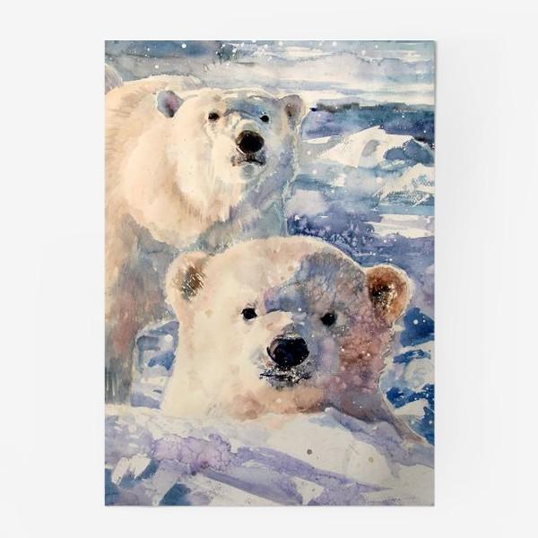 Постер «Белые медведи»