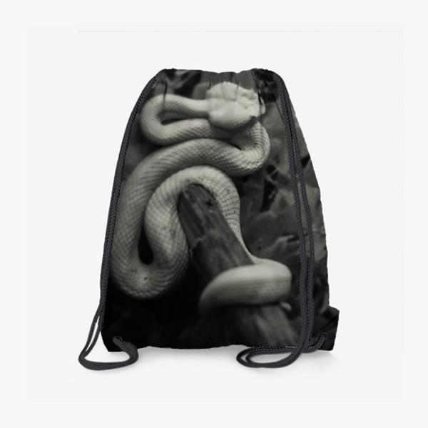 Рюкзак «2»