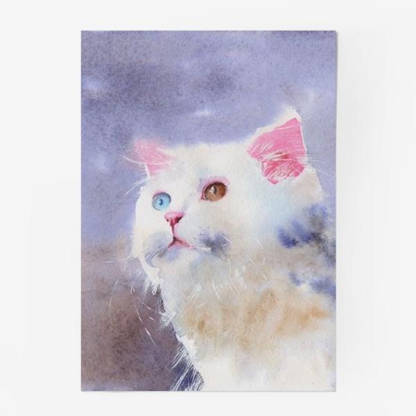 Постер «Снежок»