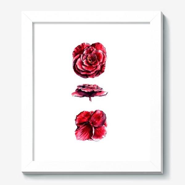 Картина «Архитектура цветка»