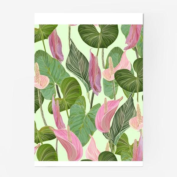 Постер «Pink anthurium»