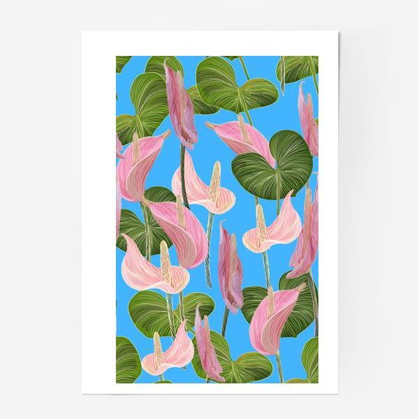 Постер «Pink anthurium 2»